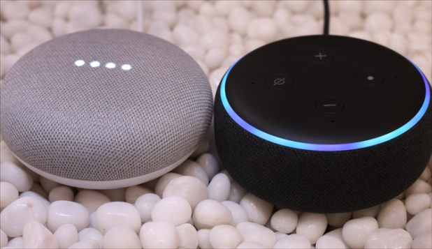 echo dot 3 v google home mini- Powered on Echo and Home mini