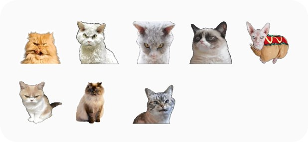 best stickers for whatsapp- cats
