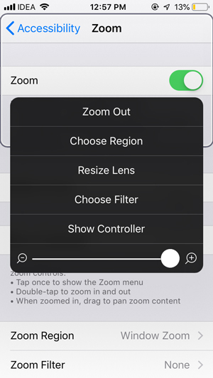 apps for old people- Zoom
