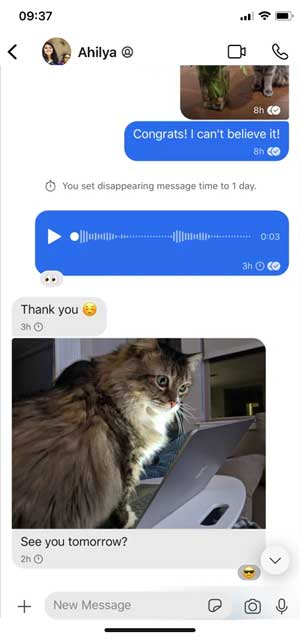 signal app with a chat window, voice messages and a picture of cat