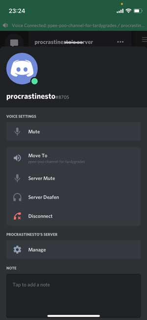 audio chats on Discord