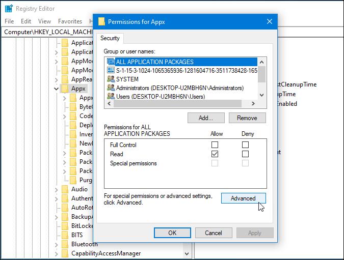 advanced permission option of registry key
