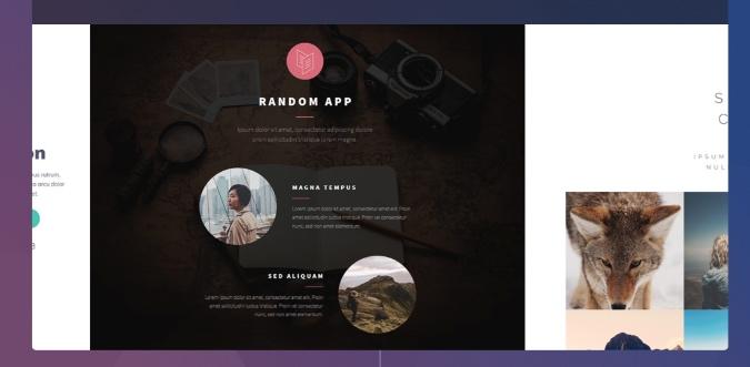 carrd website builder