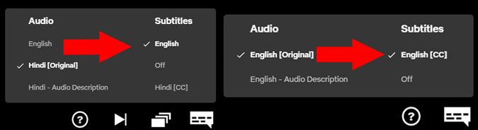 Netflix's subtitle option