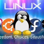 Best Linux Distros for Installation on a USB Stick