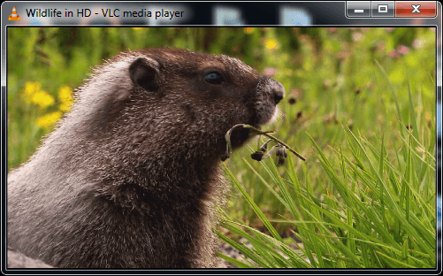 "VLC Keyboard Shortcuts: ""CTRL+H"" to show/hide controls"