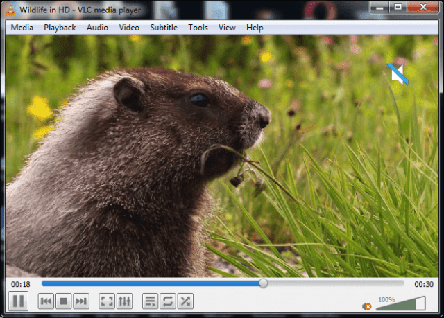 VLC keyboard shortcut: M to mute audio