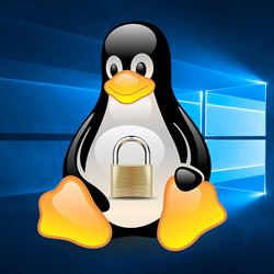linux in windows 10
