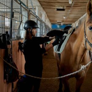 equitacion: monitor de equitacion