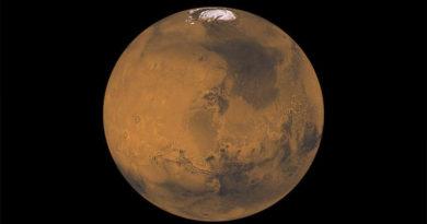 NASA pretende usar enxames de abelhas robóticas para estudar Marte