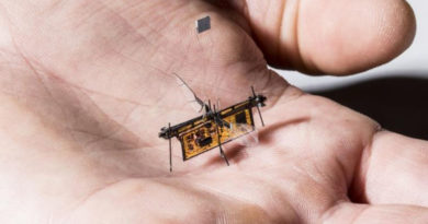RoboFly - Primeiro inseto voador, robótico e sem fio