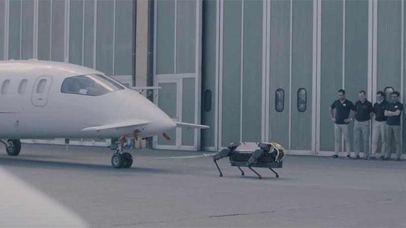 Veja o cão robô puxando um avião de 3 toneladas