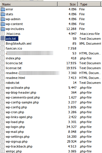 ads.txt en servidor