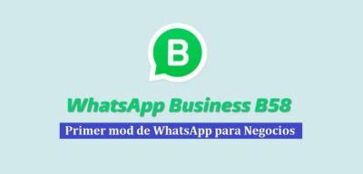 descargar whatsapp business b58 apk
