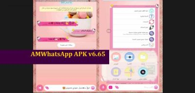 descargar amwhatsapp apk 6.65
