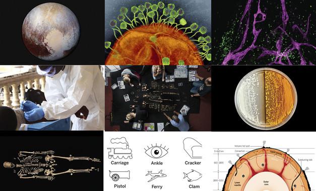 Tecnopia-Lo-mejor-de-la-ciencia-en-2015_image_380