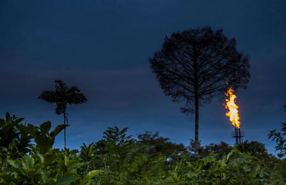 Una extracción petrolífera en plena selva del Amazonas. / Jaime Culebras