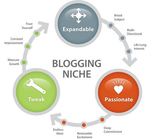 how to find blogging niche