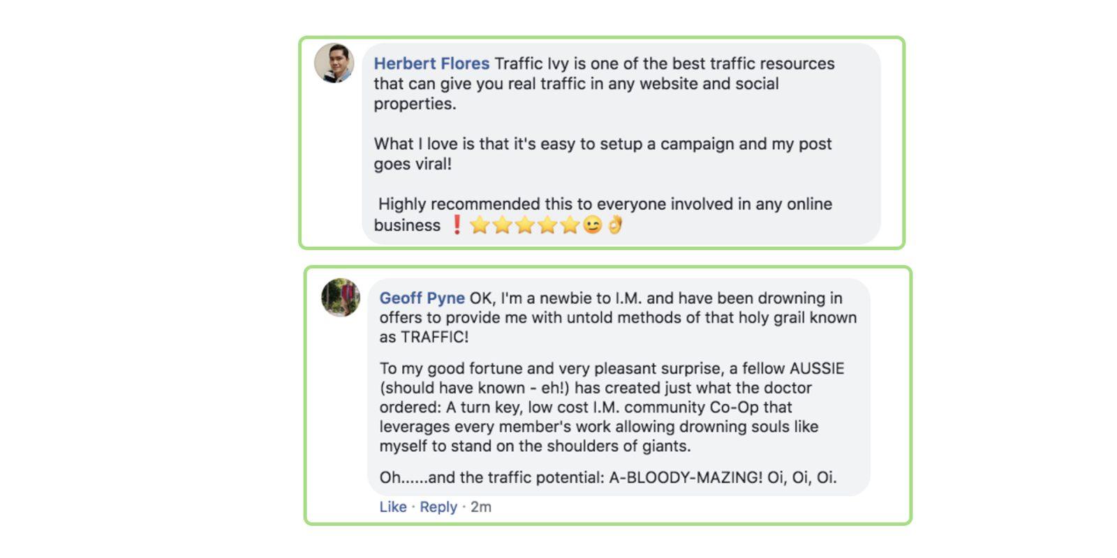 Traffic ivy customer reviews