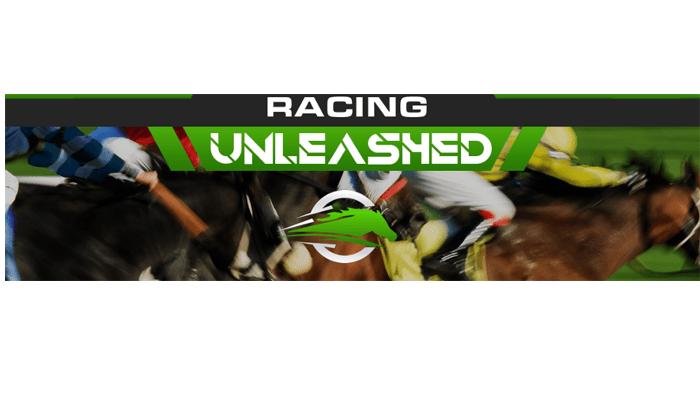 Racing Unleashed review
