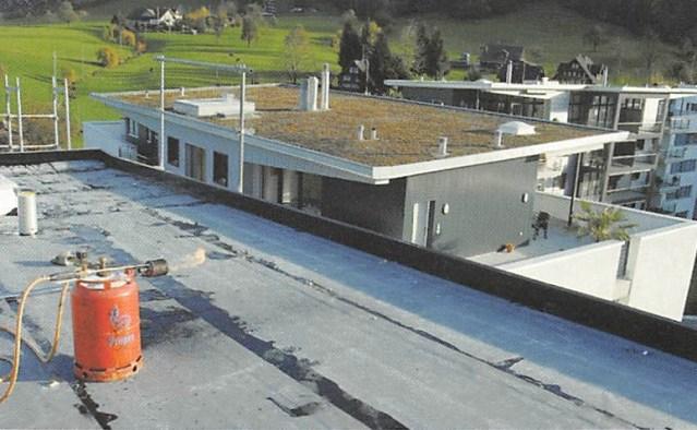 TECTON-Dach
