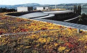 Flachdächer und Ökologie