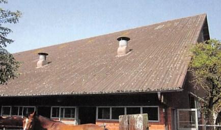 Pferdepension Wydenbuck, Henggart