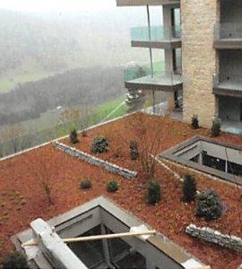 Das neue Bürgenstock Resort