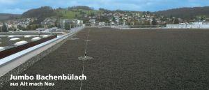 Jumbo Bachbülach
