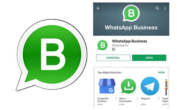 WhatsApp Business - Download Whatsapp Business App