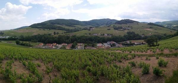 2015-005-24 france beaujolais, countryside, village wine region panorama sm