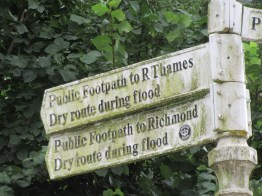 Local signs