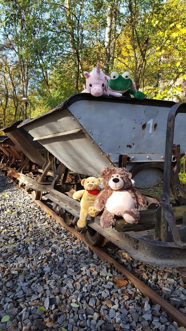 Piesberg: Motiv an der Feldbahn