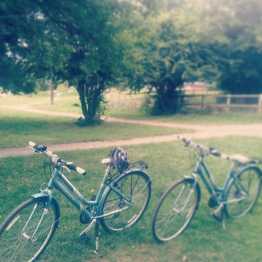 Our lovely bikes
