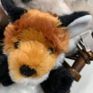 Soft Toys Dingo
