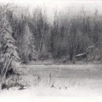 Adirondack Winter, 3