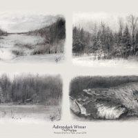 Adirondack Winter, Powdered Graphite Set