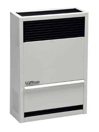 Williams 14000 BTU/Hour Direct-Vent Furnace Natural Gas Heater