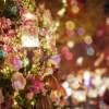 12月挙式の花嫁様に!クリスマスがテーマの結婚式に役立つアイデア
