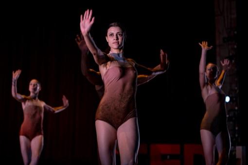 A fluid look at gravity through performance | Melissa Barak
