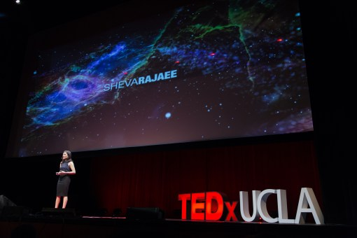 Addicted to the answer – anxiety in the age of information | Sheva Rajaee