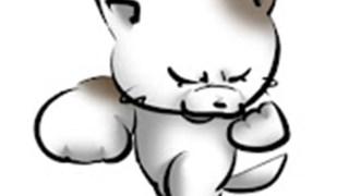 スーパー猫パンチ(超猫拳)の年齢や本名などのwiki風プロフ!素顔画像はある?仕事(職業)は?