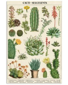 Cacti Succulents Vertical Poster