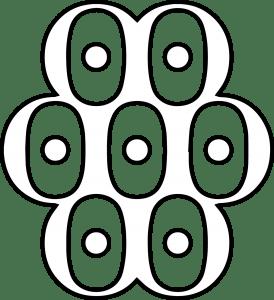 multioculoreye