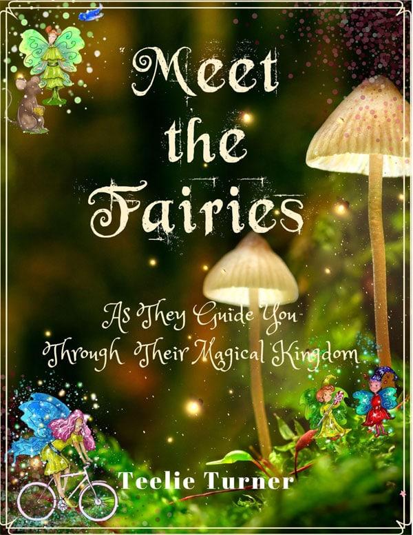 meet-the-fairies