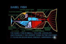 Babel-fish
