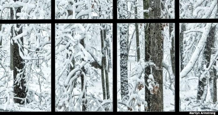 72-Window-Snow-020516_41