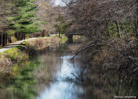 The Canal - April 2016