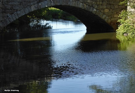 72-Reflection-Canal-082216_08