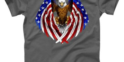 American Flag Eagle T-Shirt, USA, USA T-Shirt
